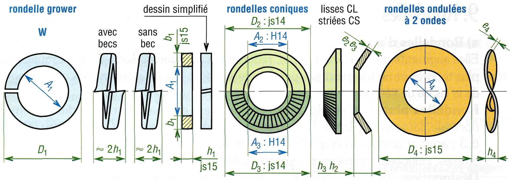 Différentes Rondelles Vis Express Visserie Et Boulonnerie Pro